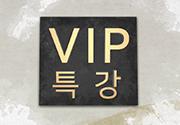VIP특강