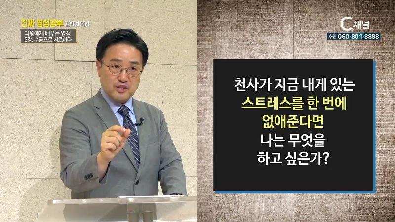 진짜 영성공부 23회 다윗에게서 배우는 영성 수금으로 치료하다 - 김한원 목사 3강(서부제일교회)