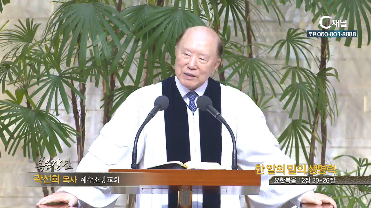 예수소망교회 곽선희 목사 - 한 알의 밀의 생명력