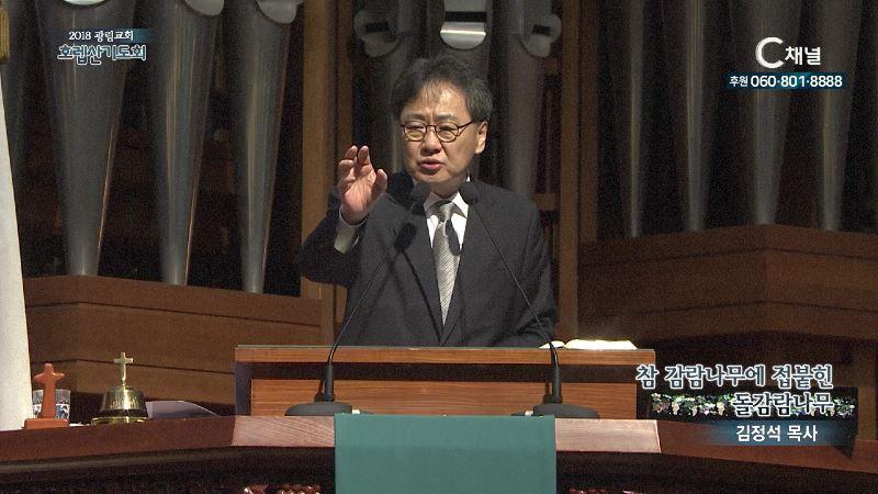 2018 광림교회 호렙산기도회 20회 김정석 목사