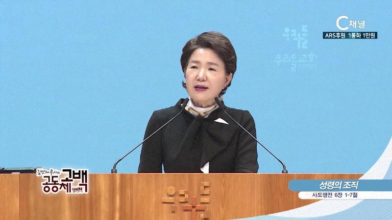 김양재 목사의 공동체고백 - 성령의 조직