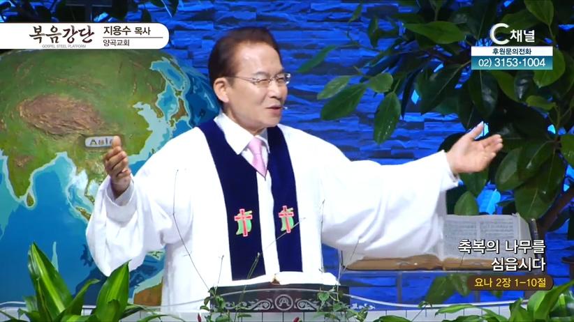 양곡교회 지용수 목사 - 축복의 나무를 심읍시다